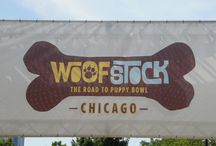 Woofstock 2015 / This board features photos taken at the Animal Planet's Woofstock held in Chicago, Illinois.