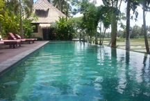 Perfect spot to explore Bali and Ubud / Exploring Bali.