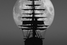 Pirate / by Sarah Zakeri