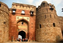 Purana Qila, New Delhi / by ZipTrips.In