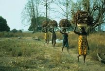 Ghana my motherland ❤❤❤
