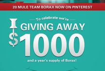 Borax! / by Aleah Gentry
