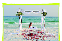 What we offer. / Thinking about having a wedding on the beach, or having a small conference.  Call us now: 083 448 1118 E-Mail: andre.saaiman@sachin.co.za #weddings #beach #conference