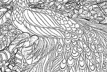 adult colouring for adaptaton