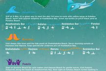 Hawaii Holiday Ideas