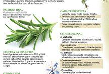 Hierbas & semillas