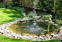 Garden n Things...