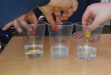 science teacher stuff / by Ashley Brumbelow