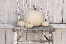 fall / by Sharon Cutbirth Hollenbeck Malenke