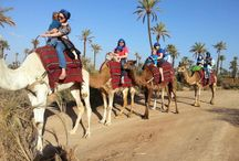 Morocco Camel Trekking / The Kingdom of Morocco is a country in North Africa with a population of 33,757,175. Morocco has international borders with Algeria to the east, Spain to the north and Mauritania to the south.