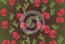 Beautiful poppy flowers / Beautiful cards or backgrounds with poppies