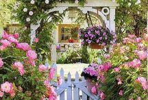Házak & kertek / Otthon