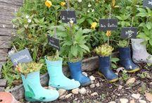 Mon jardin / Le jardinage est pour moi une source inépuisable de moments rares et ressourçant. Choisir une plantes, déterminer où elle va aller, dans quel vase, à quel endroit de la terrasse...mettre mes mains à nues dans la terre pour sentir cette matière douce, humide....planter, prendre soin, attendre et un jour voir grandir...j'apprends peu à peu et vous fait partager mes apprentissages, mes tuyaux...