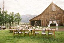 Wedding Ideas  / by Jessica SkinnyWrapGirl Moore