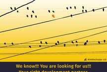Infographics Marketing / Mobile App Development Marketing, Web Marketing, SEO, App Optimization