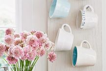 Mug displays