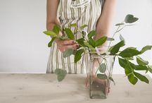 Blomster, tips og inspirasjon