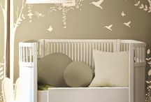 New Meda´s nursery