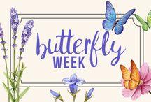 butterfly week / Celebrate all things butterfly!