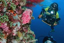 Scubing diving