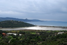 Wildlife and Landscapes in Samos