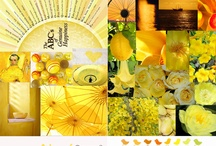 color mood yellow and mustard