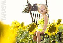 Sunflower Field!!!!!
