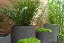 containers jardins idées