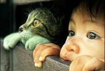 kid with animal