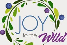 Joy to the Wild Giveaway / by WildBlueberries