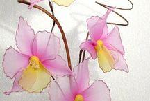 Flores de Pantys