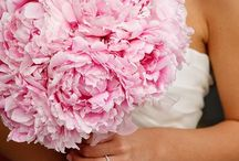 Flowers|Monochromatic / by Parsonage Events