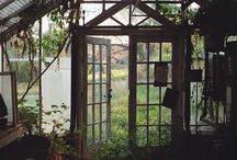 Garden: Greenhouses and Orangeries / Someday I will have a lovely glass house in my garden!