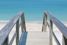 Florida lifestyle / by Shawna Fowler
