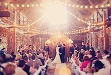 wedding: ceremony.