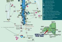 Cayuga Lake Wine Trail / The Cayuga Lake Wine Trail in the beautiful Finger Lakes Region of New York. / by Cayuga Wine Trail