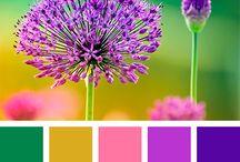 Colores que inspiran ❤️