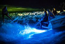 Wakesurfing / LIFEFORM LED and the Brigade Wakesurf crew teamed up to creating a stunning light display at Lucky Peak reservoir in Boise, Idaho!