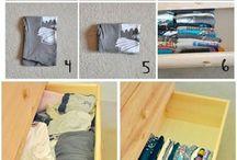 Organizzazione della camera