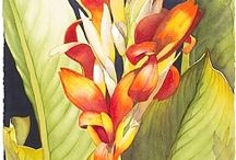 Egzotyka-rosliny
