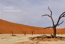 Namibia / The wide open spaces of Namibia, scenes to blow your mind!