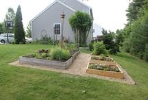 Gardening n landscaping