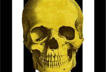 Tableau Tendance Skull / Planche de tendance pour la création d'un tableau