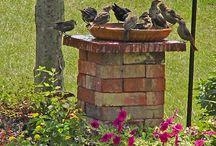 Lugar p/ alimentar as aves