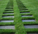 Lawn Design / Super-Sod loves gardens. Here's inspiration from around the world. Turf. Sod. Grass. Whatever you call it, it's beautiful!