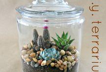 Live in Jar