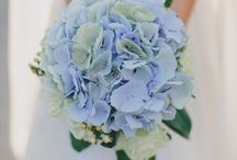 MOOD - White and Blue wedding / Ideas and Inspiration for a wedding on Maggiore Lake. Color theme: white and blue