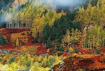 Skotska högländerna