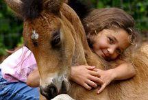 Horses & Horses / by Malinda Balentine