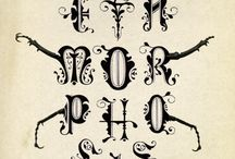 Book Typography